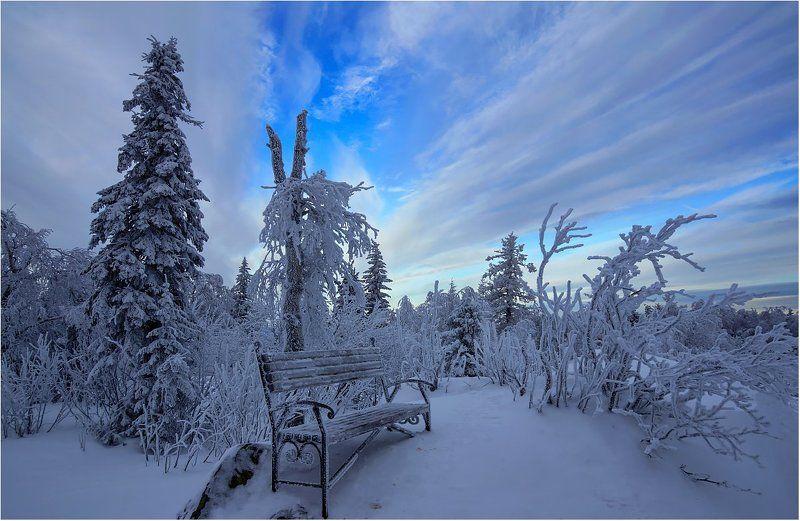 зима снег деревья скамейка Таёжный комфорт...photo preview