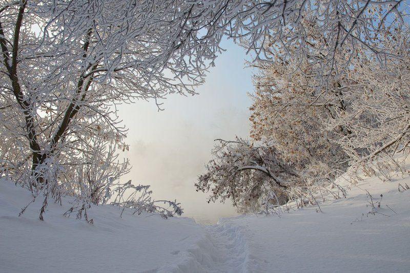 зима снег иней холод природа Зимний день в сквозном проёмеphoto preview