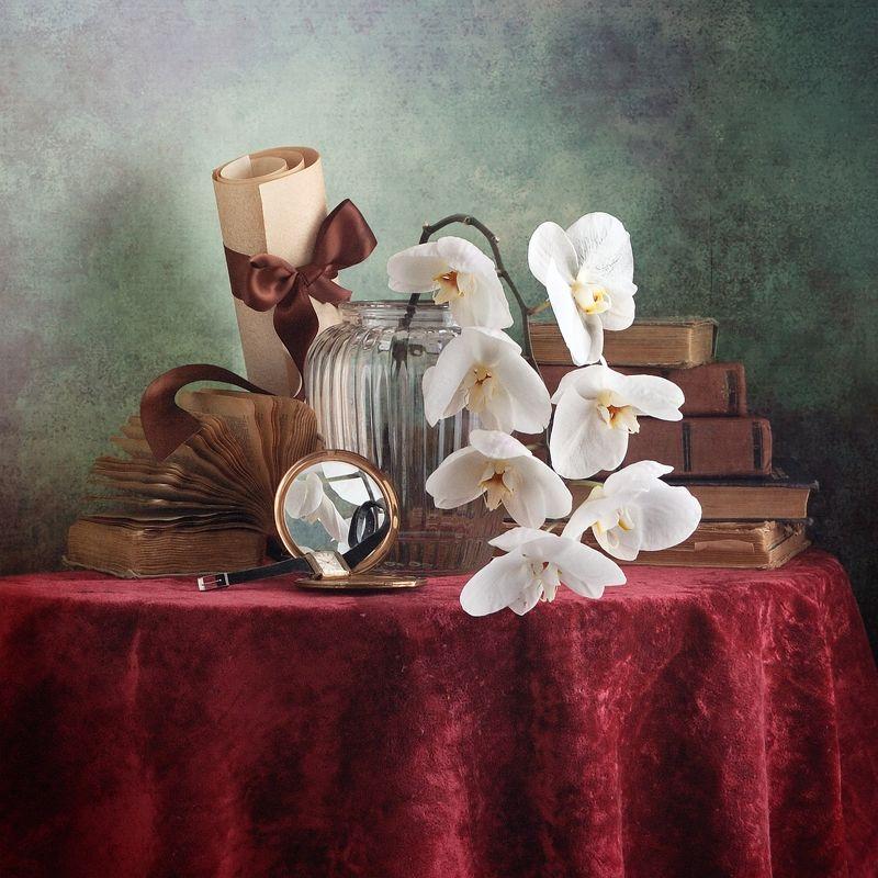 Классический, натюрморт, белый, орхидея, стеклянный, ваза, старый, книга, темно-красный, ткань, драпировка, домашний, интерьер, винтажный, зеркало Белая орхидеяphoto preview