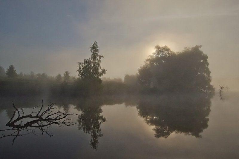 утро рассвет природа пейзаж Живёт повсюду красотаphoto preview