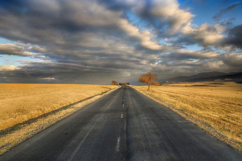 дорога в дальphoto preview