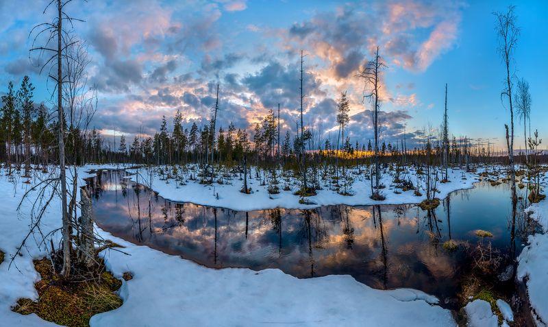 ленинградская область, болото, зима, снег, закат, сосны, река, облака Весенняя река.photo preview