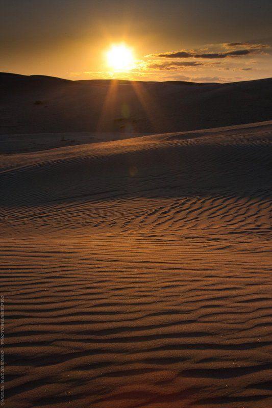 пейзаж, пустыня, песок, пески, закат, солнце, вечер, барханы, Мангистау, Мангышлак, Устюрт, landscape, Mangistau, Mangyshlak, Ustyurt Вечер в песках / Evening in the sandsphoto preview