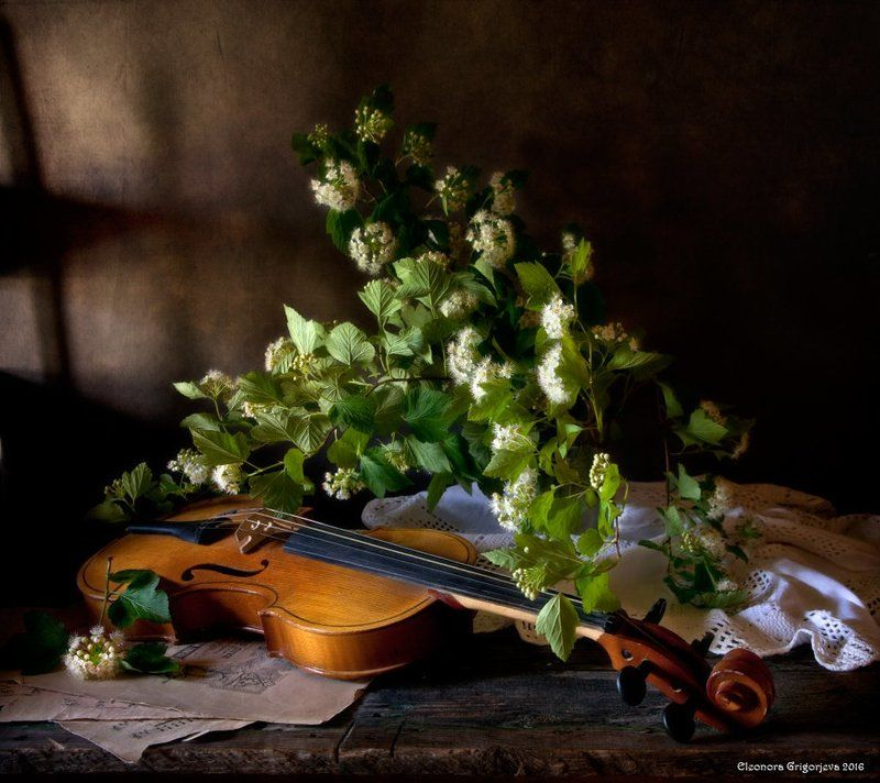 скрипка, музыка, ноты, лето, цветы, натюрморт С праздником, милые дамы!photo preview