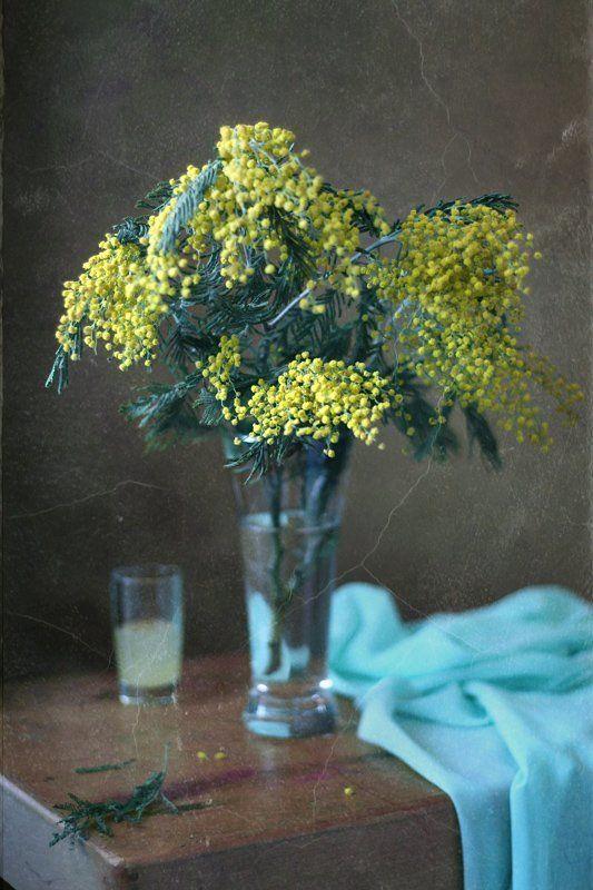 натюрморт, цветы, мимоза, весна Пусть отступают холода...photo preview