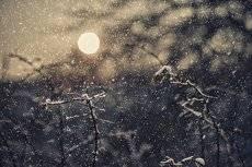 Снег кружится и падает