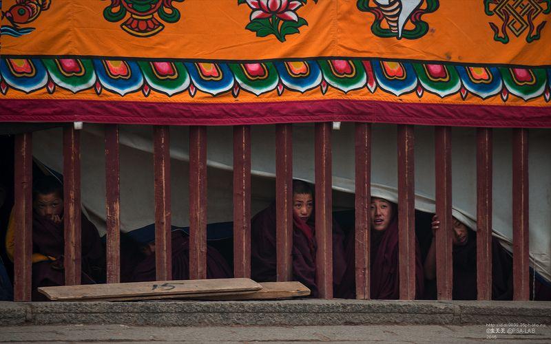 церемонии- лама 观礼的喇嘛photo preview