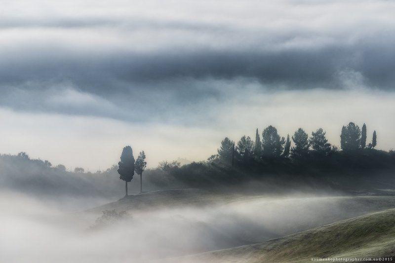 европа, италия, тоскана, тосканский, орча, пейзаж, панорама, туман, красота, страна, кипарис, рассвет, ферма, дом, поле, сад, холм, холмы, дом, итальянский, легкий, утро, загадочный, природа, дорога, провинция, декорации, живописный, восход, дерево Италия. Тоскана. Двое на холмах долины Val d\'Orciaphoto preview