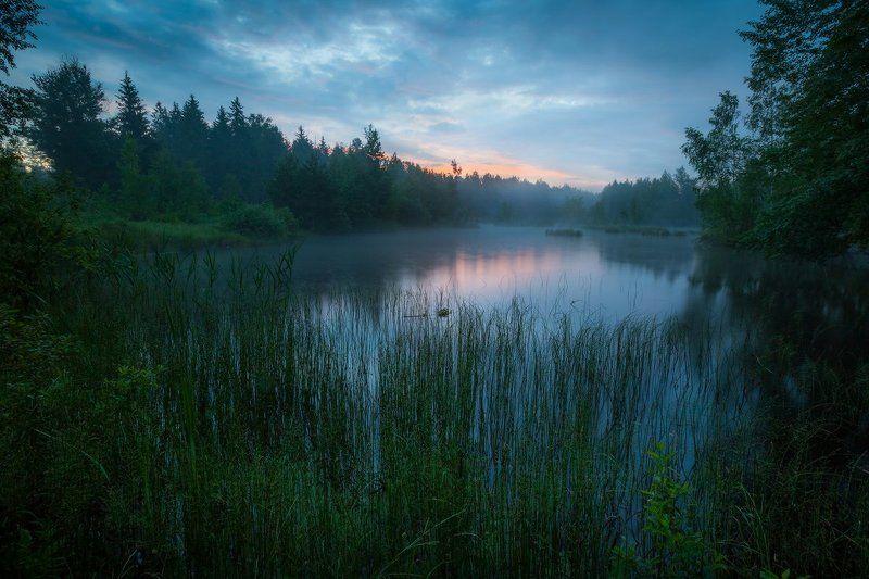 утро, лето, озеро, рассвет, лес Утреннее пробуждениеphoto preview