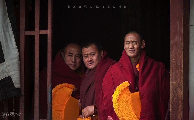 методбудетнамонахов 法会上的僧侣photo preview