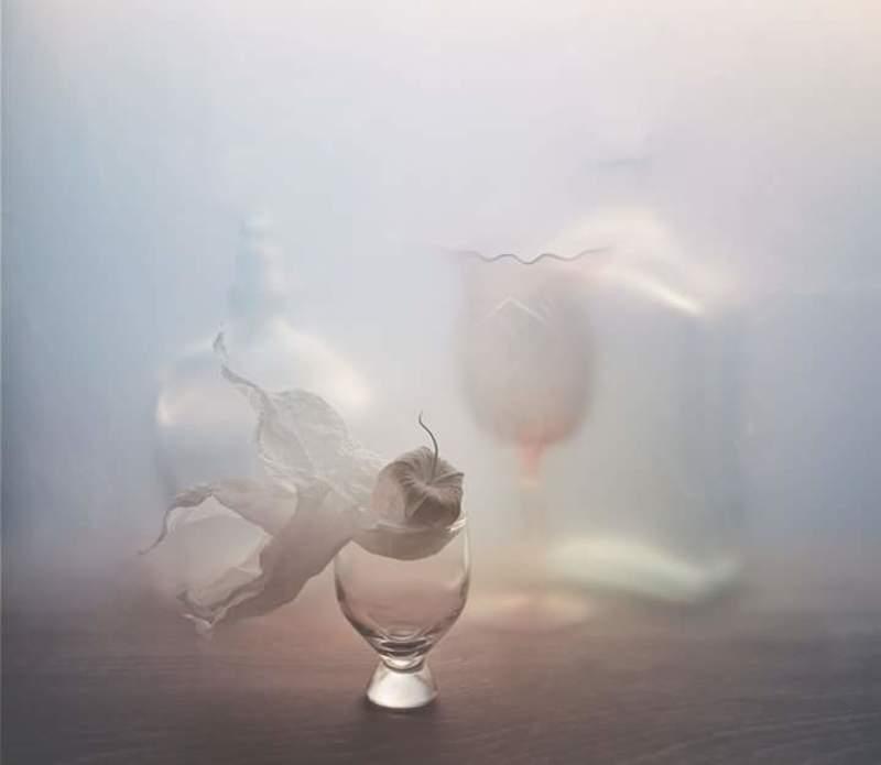 Физалис, салфетка, рюмка, бокал, бутылка, светлый, посуда, арт, натюрморт С физалисомphoto preview