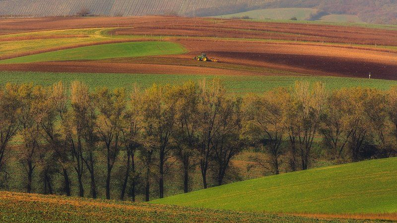 landscape,canon,moravia,light,spring Springphoto preview