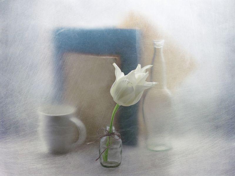 Тюльпан, цветок, натюрморт, чашка, бутылка, бантик, нитка, книга, арт С белым тюльпаномphoto preview