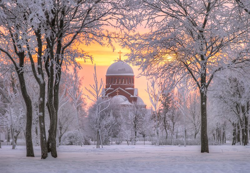 санкт-петербург зимний рассвет в Муринском парке...photo preview