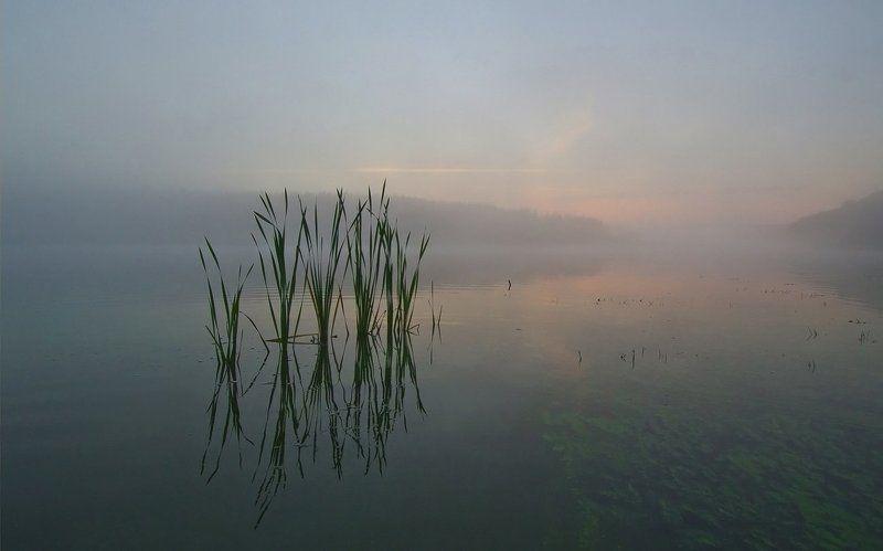 утро рассвет природа пейзаж озеро новое Рассвет на мелководьеphoto preview