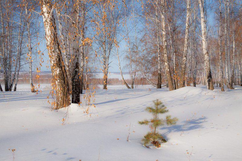 Осенне-зимний мартphoto preview