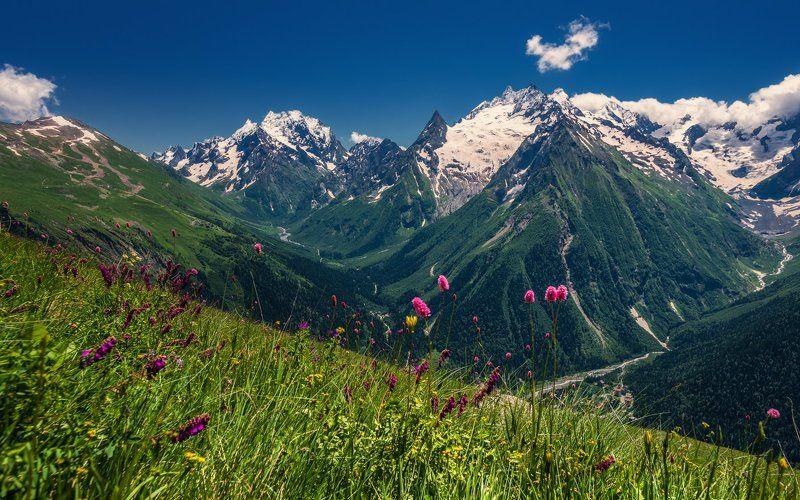 Мелодия гор Кавказаphoto preview