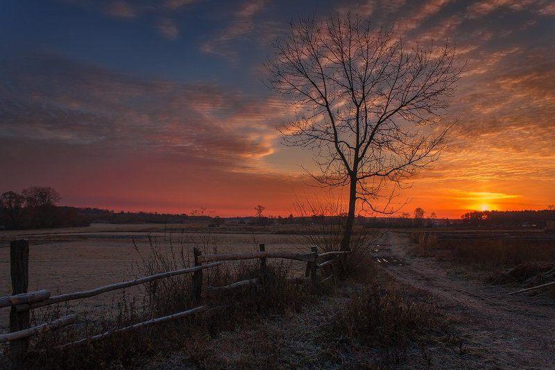 пейзаж,природа,рассвет,закат,осень,небо,солнце,свет,деревня ..photo preview