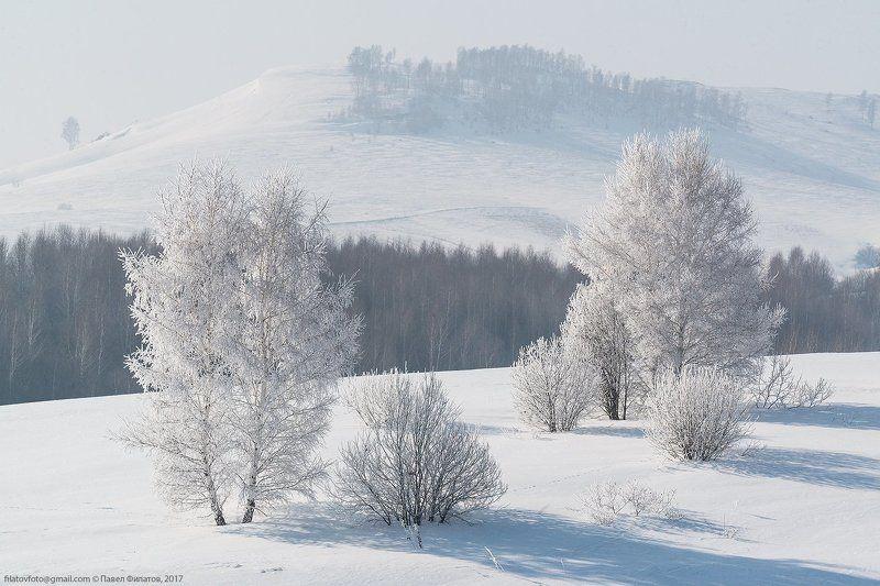Морозная дымкаphoto preview