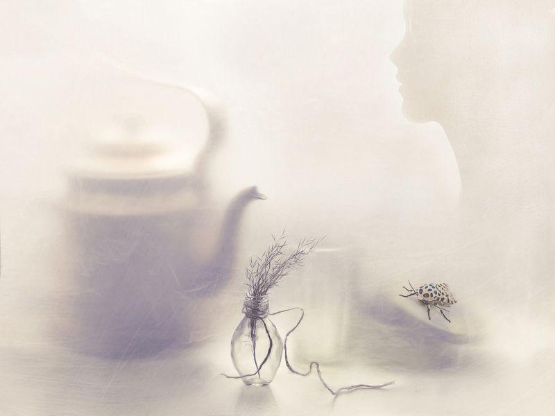 чайник, силуэт, камыш, растение, стакан, бутылка, нить, природа, коробка, насекомое, арт, натюрморт ...photo preview