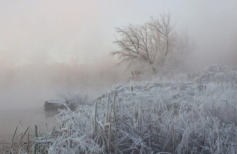 зима снег холод косая гора пейзаж Холодное серебро Косой Горыphoto preview