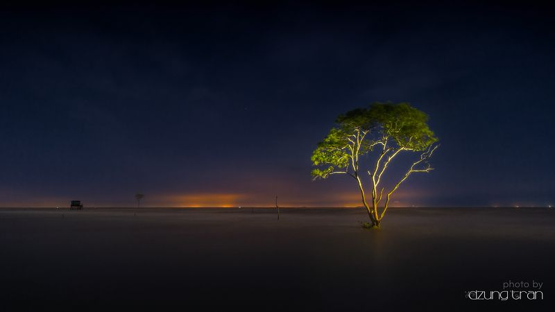 #lonely #tree #landscape Lonelytreephoto preview
