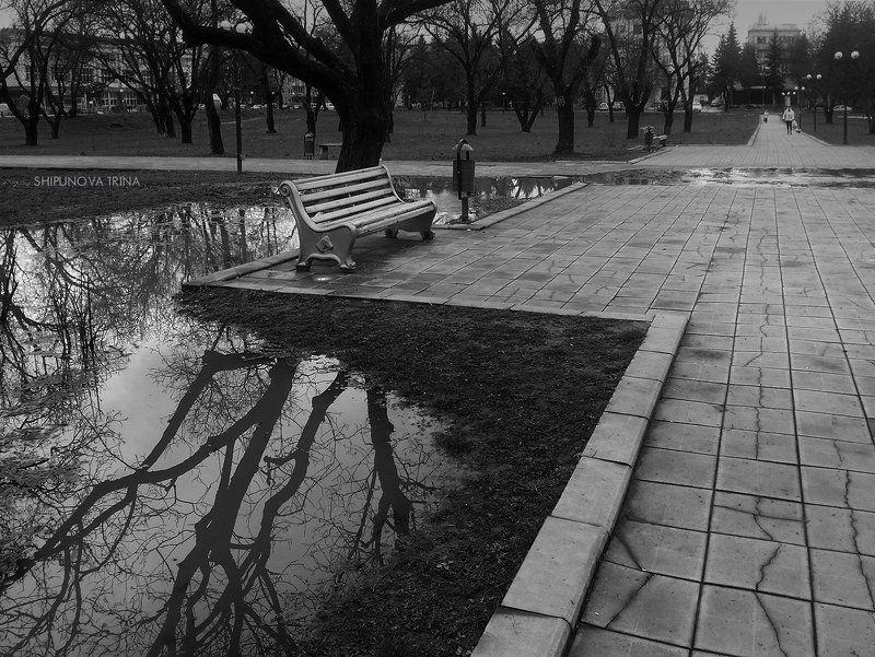 После дождяphoto preview