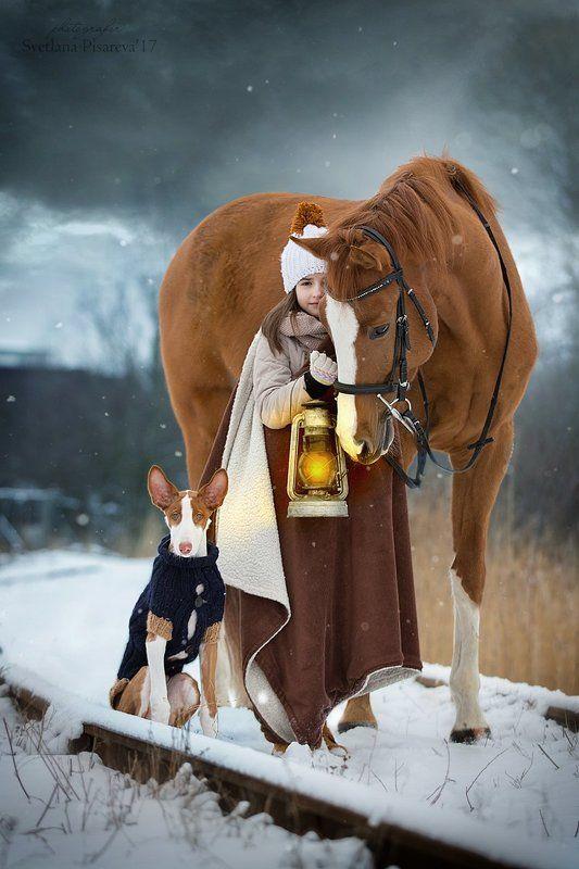 ребенок, девочка, лошадь, собака,  Сказка странствий...photo preview