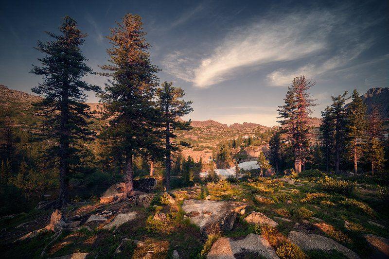 пейзаж, природа, вечер, деревья, озеро, горы, скалы, камни, теплый, большой, высокий, красивая, красноярский, край, хребет, ергаки, сибирь, саяны, лазурное Лазурноеphoto preview