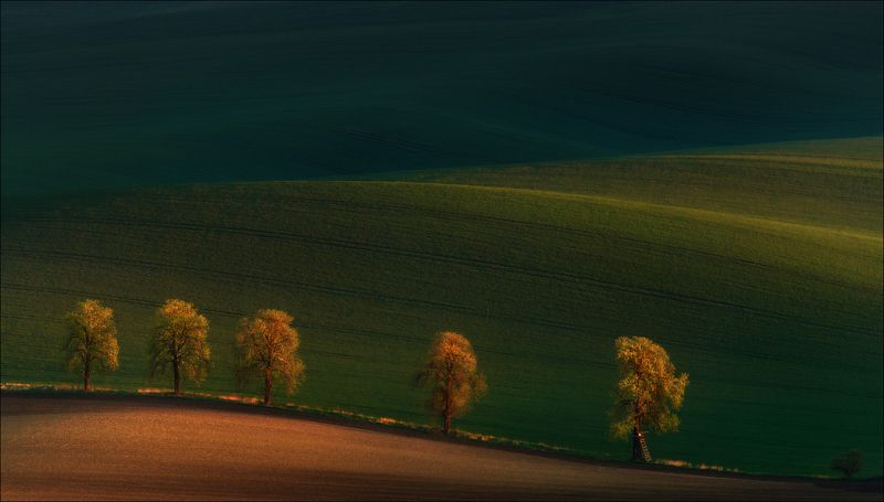 чехия, южная моравия, весна, south moravian, morava, czech, Shadows on the fields....photo preview