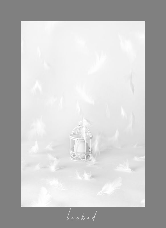 яйцо, клетка, взаперти, перья, белый, концепт Lockedphoto preview