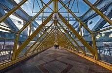 Пушкинский мост.