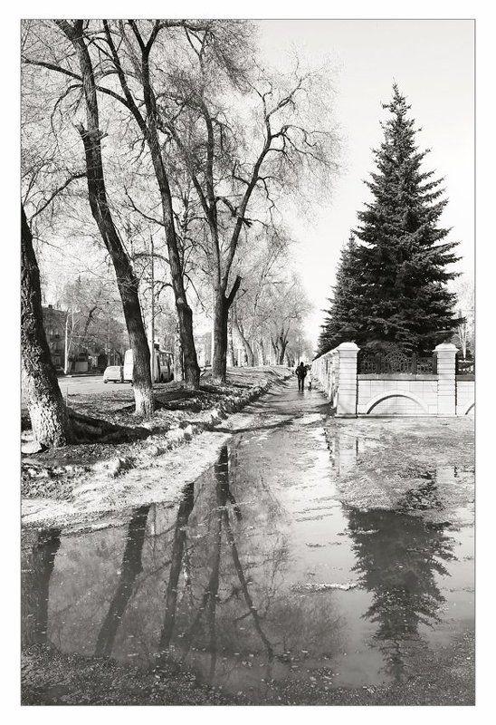 весна, март, черно-белое Черно-белая весна. Март.photo preview