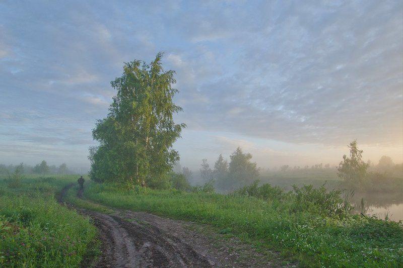 утро рассвет природа пейзаж Троицыно утроphoto preview