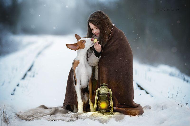 ребенок, девочка, собака, фонарь, дорога, зима. Я отдам тебе последнее...photo preview
