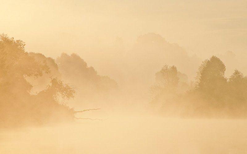 утро рассвет река упа якшино туман пейзаж природа Сезон тумановphoto preview
