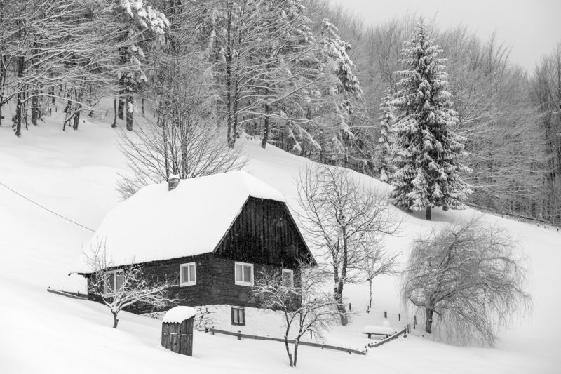 winter,house,trees,white,snow,landscape,nature, Say goodbye to winterphoto preview