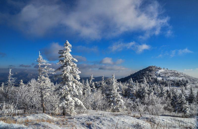 Приморье, Приморский край, зима, снег, горы Холодная сказкаphoto preview