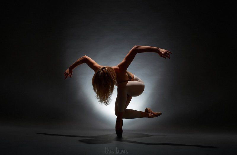 ballerina, ballet, dance, dancing, portrait, studio, Птицаphoto preview