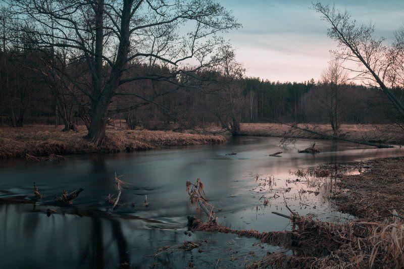 Весна, Март, река Уша Весна. Март. На берегу реки Ушаphoto preview