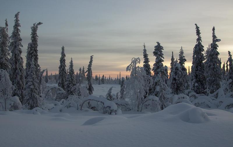 Зимняя вечерняяphoto preview