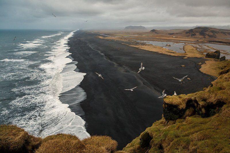 Исландия. Dyrholaey. Исландское побережье.photo preview