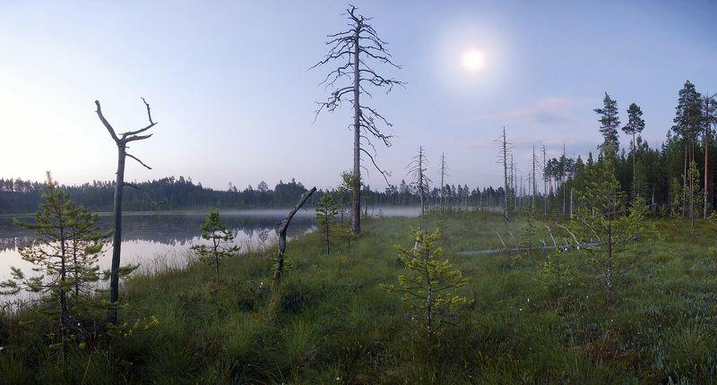 карелия болото Полночной пороюphoto preview