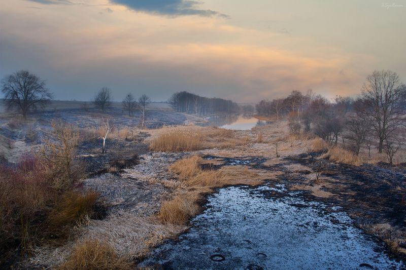 март,весна,утро,пруд,болото Весна покажет, кто, где ....photo preview