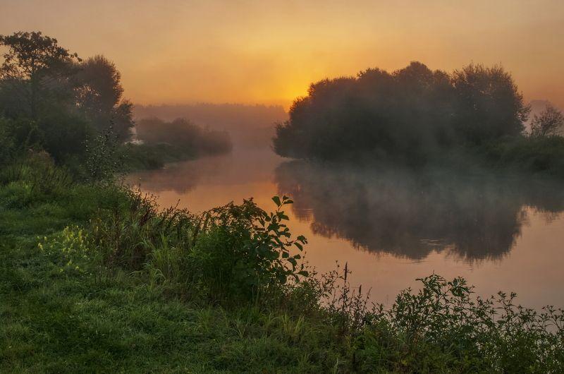 рассвет, туман, природа На утренней зорькеphoto preview