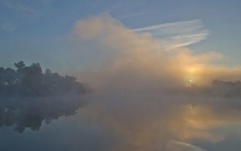 утро рассвет природа пейзаж Скользит по небу рыжая лисаphoto preview