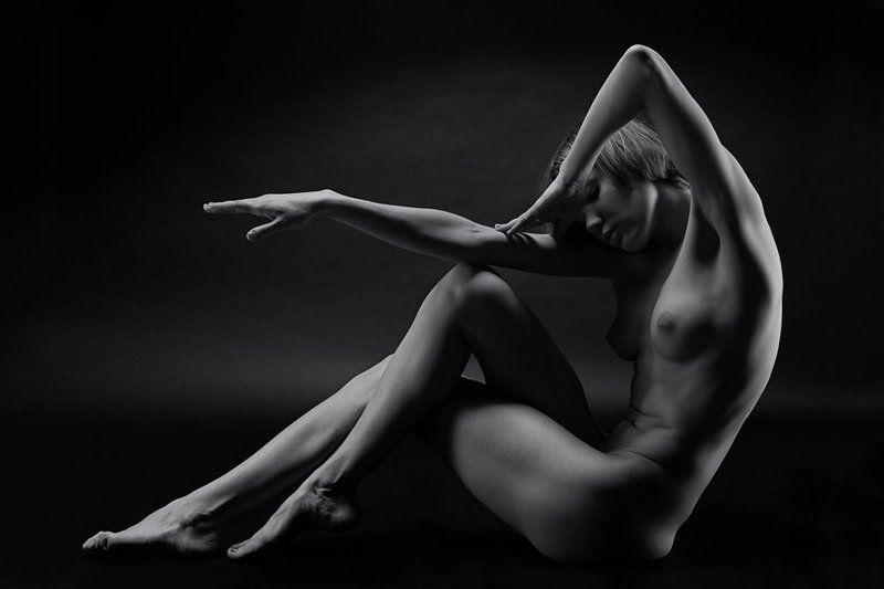 девушка, модель, студия, ню, чб, формы, линии *photo preview