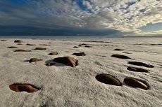 Камни на льду