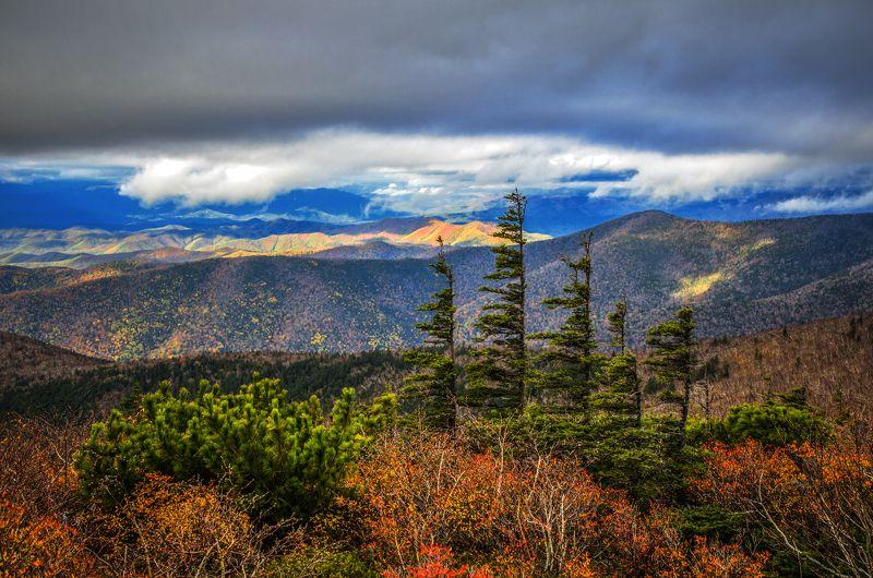 Горы, елки, приморье, Приморский край Стражникиphoto preview