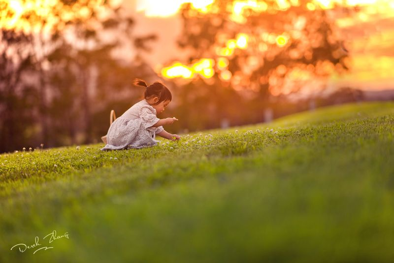 sunset, wild, flowers, field, kid, child, girl, fun, family sunset wild timephoto preview
